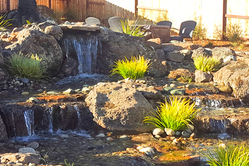 What Are The Benefits of Low Water Landscaping?
